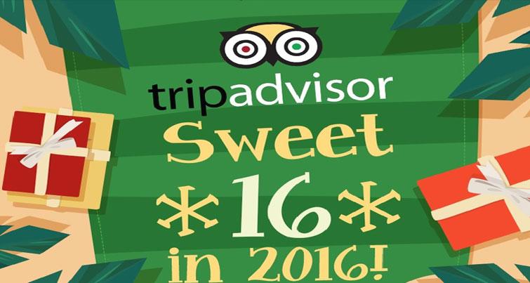 tripadvisor sweet*16* in 2016; know more about tripadvisor
