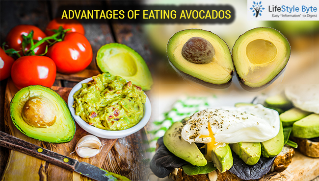 advantages of eating avocados