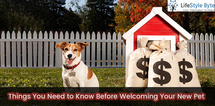 things you need to know before welcoming your new pet