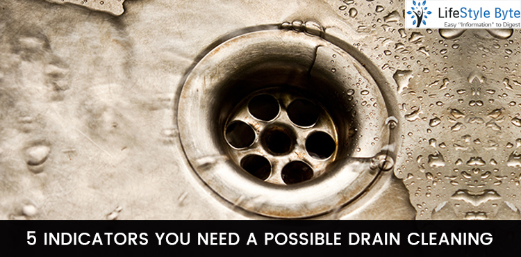 5 indicators you need a possible drain cleaning